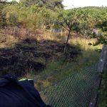 Flächenbrand 3